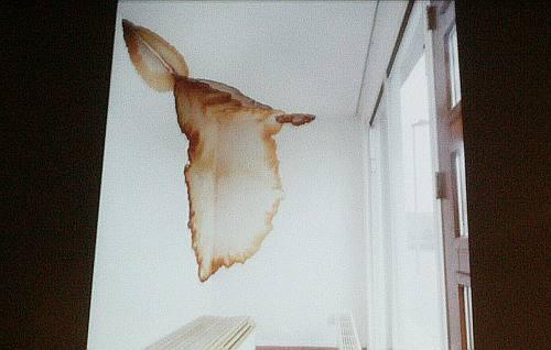 een voorbeeld van een lekkage die als behang wordt aangebracht