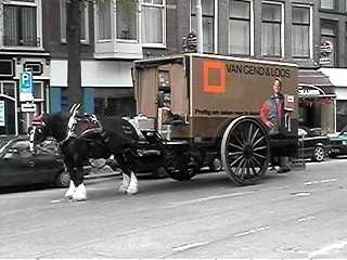 Paard-en-wagen zullen blijven in de Haagse binnenstad ...