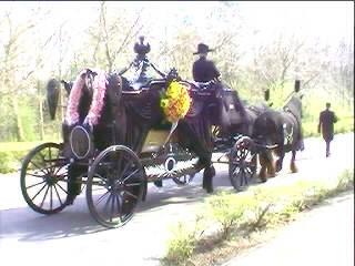 Stapvoets rijdt de rouwstoet met paarden achter de begeleider aan ...